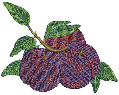 Embroidery Design: Batch of Plums Lg 4.02w X 3.15h