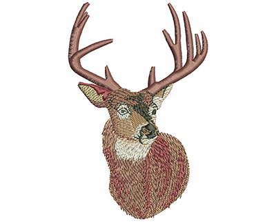 Embroidery Design: Whitetail Portrait Med 2.58w X 4.01h