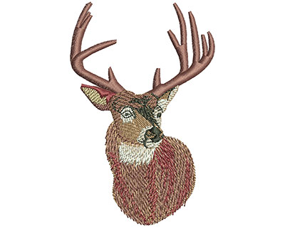 Embroidery Design: Whitetail Portrait Sm 2.26w X 3.51h