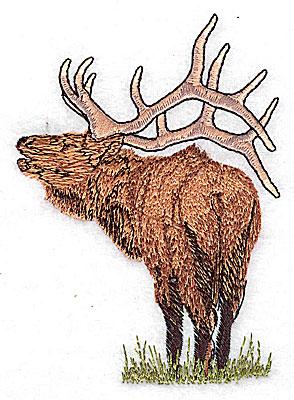 Embroidery Design: Caribou 2.93w X 4.13h