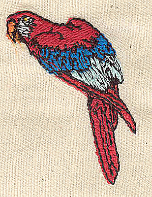 Embroidery Design: Parrot 1.31w X 2.88h