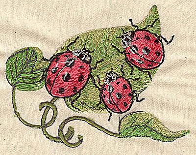 Embroidery Design: Ladybugs on leaf 3.88w X 3.00h