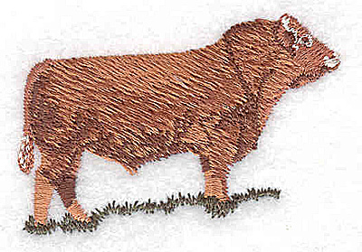 Embroidery Design: Steer1.50W x 2.94H