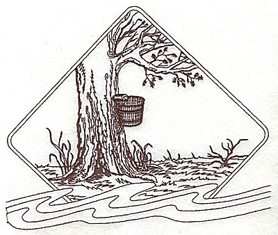 Embroidery Design: Maple tree with bucket for maple syrup 7.25w X 5.94h