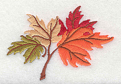 Embroidery Design: Maple Leaves   3.25w X 2.31h