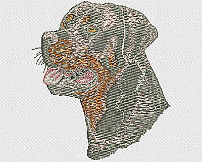 Embroidery Design: Rottweiler headshot 2.56w X 2.94h
