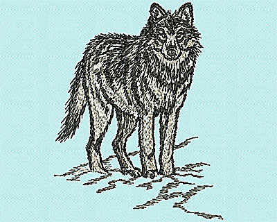 Embroidery Design: Realistic Wolf 3.50w X 4.50h