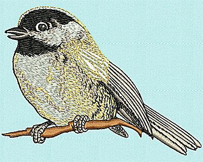 Embroidery Design: Realistic Bird 4.13w X 3.06h