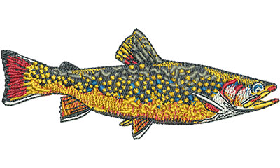 Embroidery Design: Brook Trout Med 4.00w X 1.60h