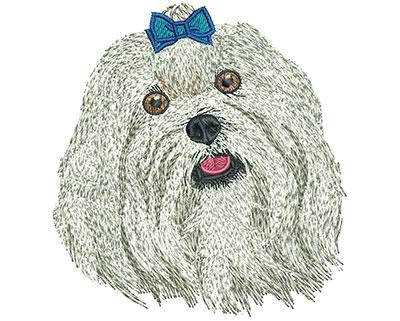 Embroidery Design: Maltese Sm 3.32w X 3.56h