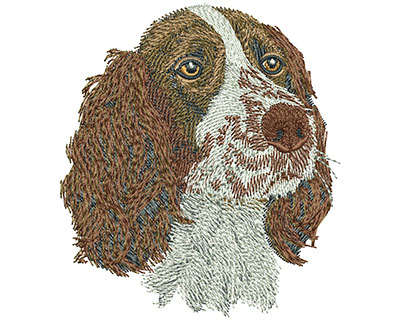 Embroidery Design: Springer Spaniel Sm 3.10w X 3.49h