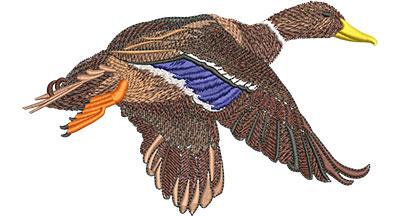 Embroidery Design: Mallard Lg 6.06w X 3.67h
