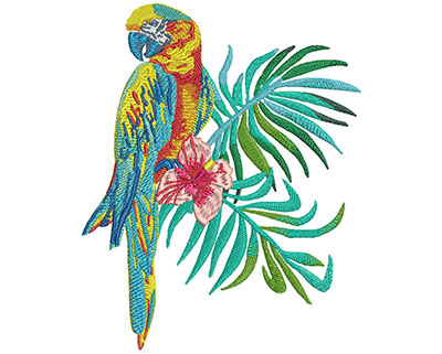 Embroidery Design: Macaw Small7.02H x 5.64W