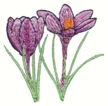 """Embroidery Design: Crocus2.26"""" x 2.21"""""""