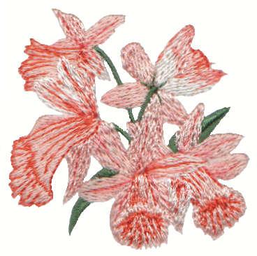 "Embroidery Design: Daffodils2.31"" x 2.00"""