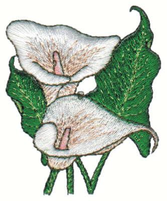 """Embroidery Design: Calla Lily2.15"""" x 2.63"""""""