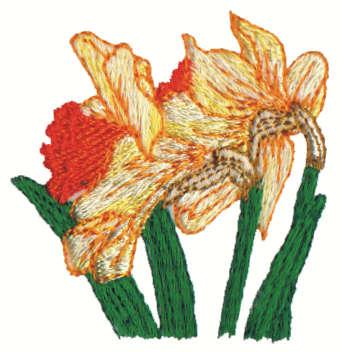 "Embroidery Design: Daffodils2.14"" x 2.26"""