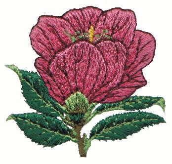 """Embroidery Design: Magnolia2.19"""" x 2.07"""""""