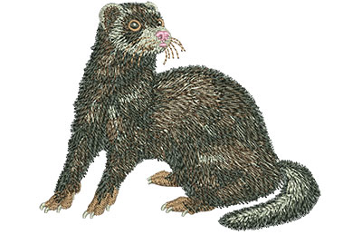 Embroidery Design: Ferret Med 3.94w X 3.25h