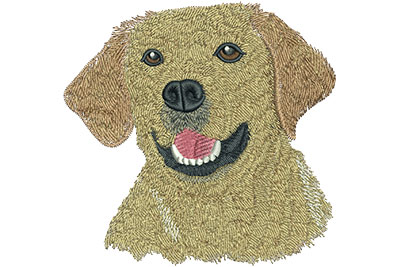 Embroidery Design: Yellow Lab Lg 4.53w X 4.45h