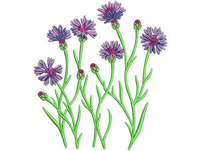 Embroidery Design: Cornflower Lg 3.91w X 4.45h