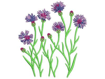 Embroidery Design: Cornflower Med 3.47w X 3.94h