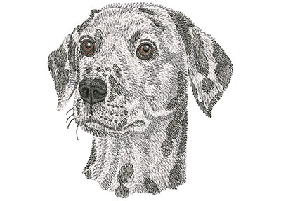 Embroidery Design: Dalmatian Face Lg 4.45w X 4.42h