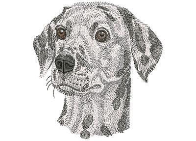 Embroidery Design: Dalmatian Face Lg 4.45w X 4.42h
