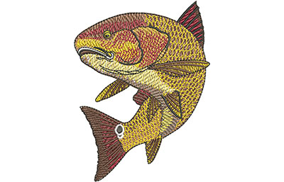 Embroidery Design: Redfish Swim Med 2.98w X 3.99h