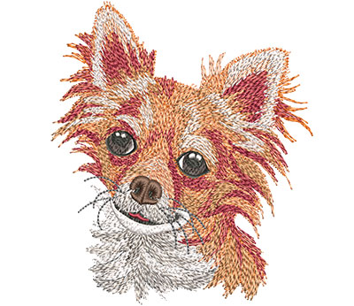 Embroidery Design: Long Haired Chihuahua Lg 4.45w X 5.17h
