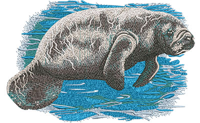 Embroidery Design: Manatee Med7.01 w x 4.55 h