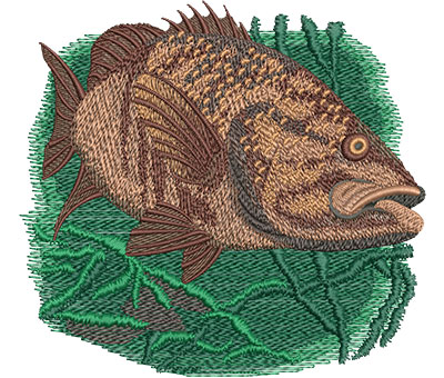 Embroidery Design: Smallie Lg 5.84w X 5.37h