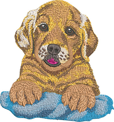Embroidery Design: Golden Retriever Puppy Lg 5.58w X 5.95h