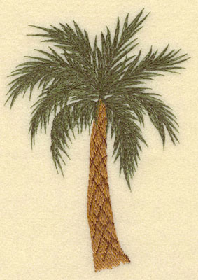 Embroidery Design: Palm Tree4.83w X 6.84h