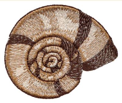 "Embroidery Design: Seashell 62.82"" x 2.36"""