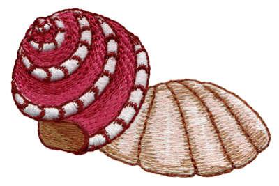 "Embroidery Design: Seashells 12.60"" x 2.34"""