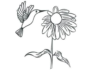 Embroidery Design: Hummingbird with Flower Outline 6.42w X 7.09h