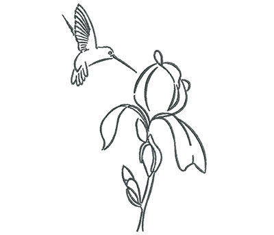 Embroidery Design: Hummingbird with Rose Flower Outline 4.51w X 7.13h