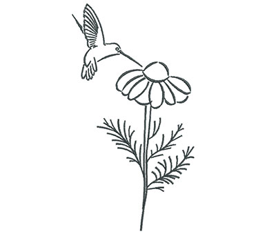 Embroidery Design: Hummingbird Eating Flower Outline 3.88w X 7.20h