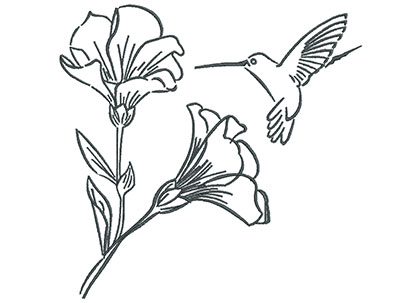 Embroidery Design: Hummingbird with Blooming Flowers Outline 7.30w X 7.09h
