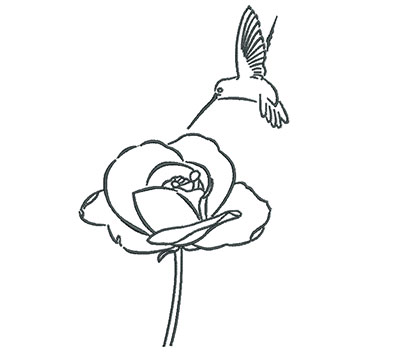 Embroidery Design: Hummingbird With Rose Outline 4.37w X 7.10h