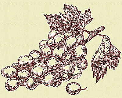 Embroidery Design: Winery grapes small 4.38w X 5.75h