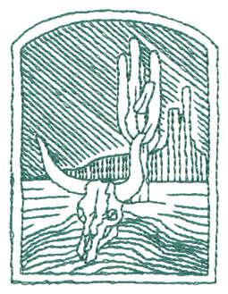 """Embroidery Design: Desert Ranch Skull - Outline2.21"""" x 2.95"""""""