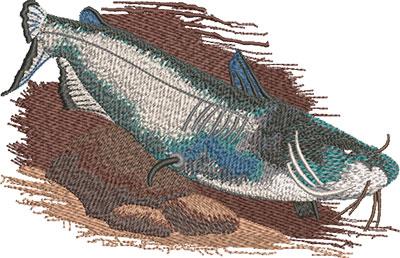 J-7021ChannelCatfish_L