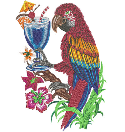 parrot with drink embroidery design