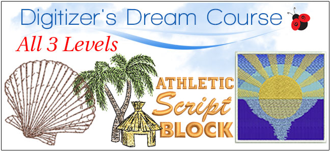 All 3 Digitizer's Dream Course Levels