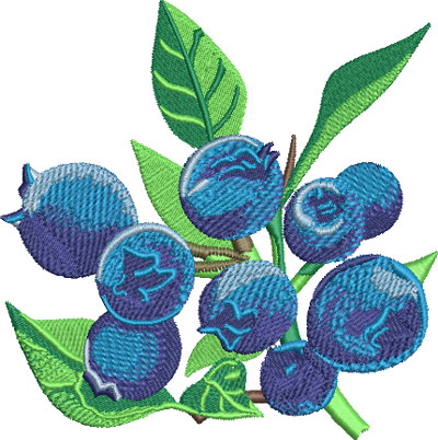bluberries embroidery design