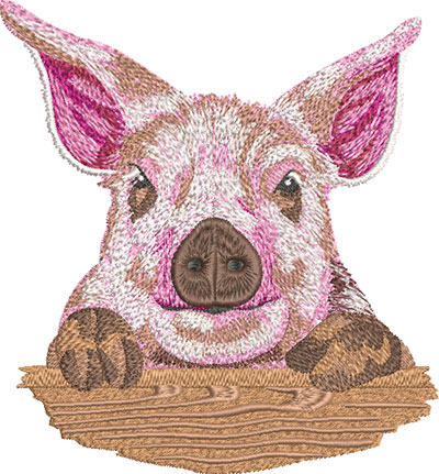 cute piglet embroidery design