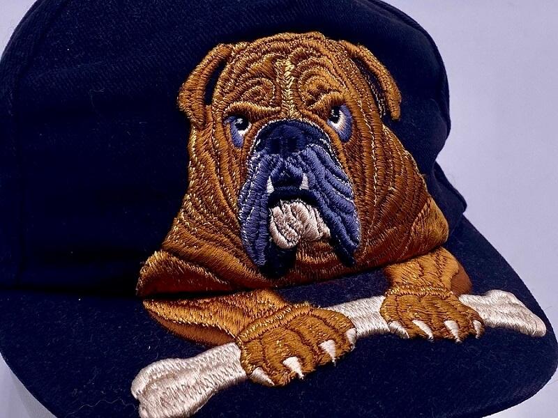 3d Puffy Foam Bulldog Hat