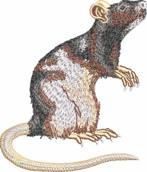 pet rat embroidery design